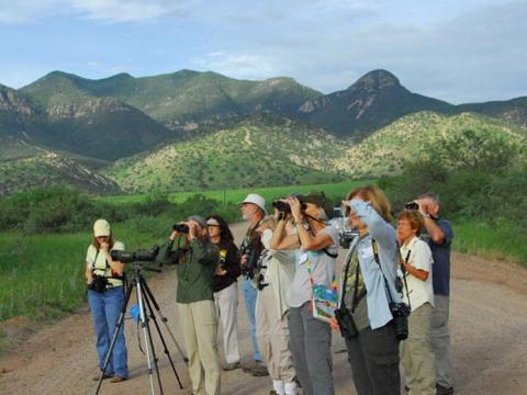 Ohne Fernglas geht nichts auf dem Southeast Arizona Birding Festival in Tucson