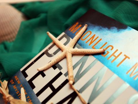 Seemuscheln und Bücher auf Amelia Island, Florida