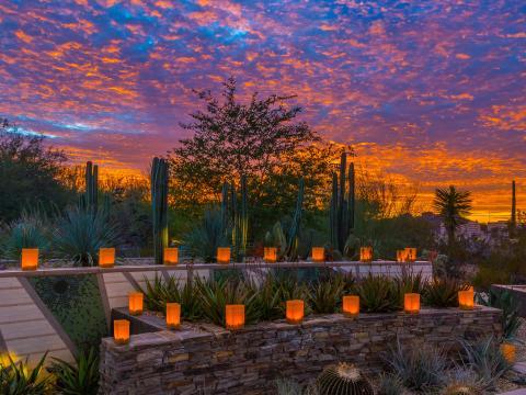 Laternen im Abendlicht bei der Las Noches de las Luminarias in Scottsdale, Arizona