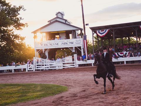 Pferd und Reiter bei der Shelbyville Horse Show in Shelbyville, Kentucky